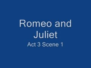 The Cause Of Romeo And Juliet s Death - Essay